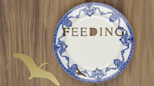 Feeding plate - CJ O'Neill