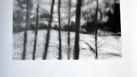 seventrees | darklight - Joe McCullagh