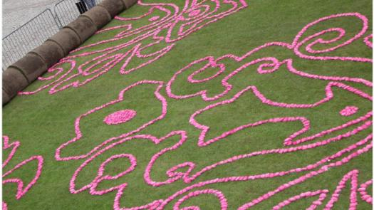 Carpet of Flowers Installation in Albert Square - Jo Vickers