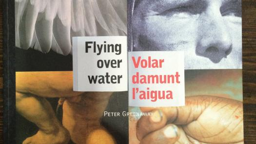 'Flying Over Water' by Peter Greenaway (1997) - Sue Fox