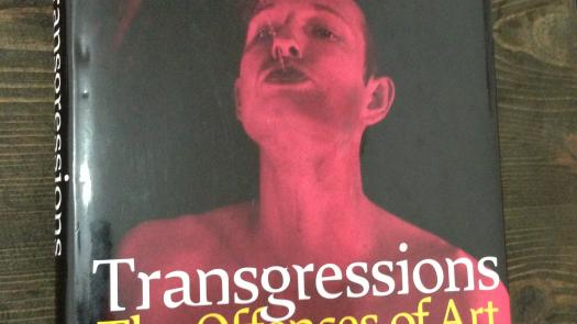 Transgressions - The Offences of Art by Anthony Julius (2002) - Sue Fox