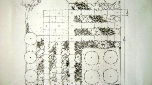 'Where Paths Cross' Antony Nolan Trust Garden, RHS Tatton. plan