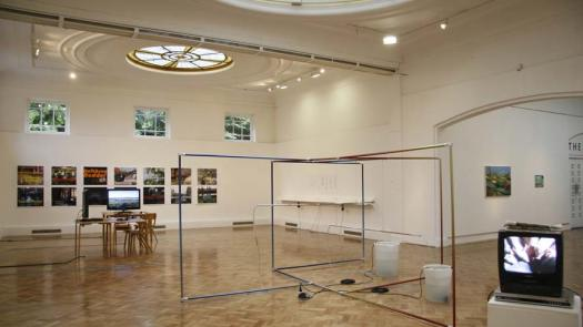 Installation view of Always Greener Exhibition at PM Gallery - Rosemary Shirley