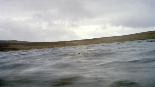 Landscape for the Tryweryn Valley, 2000