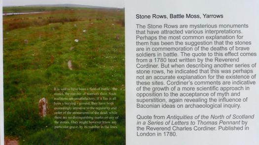 Exhibition Image 5: Stone Rows, Battle Moss, Yarrows - Jane Webb