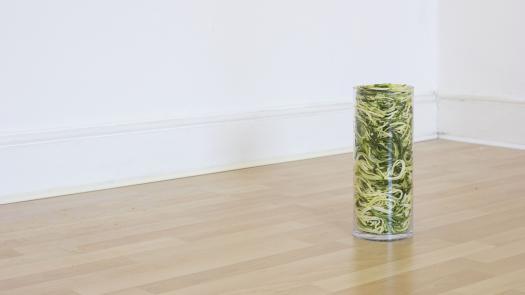 Green Veg Isolated