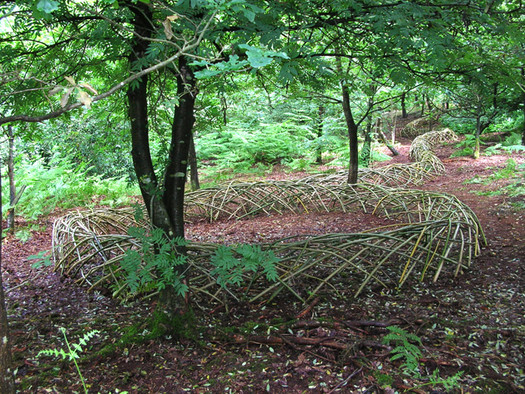 Adventure+play=Discovery (Woodland Trust Project)