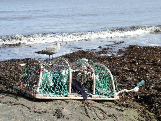 lobster kreel-washed ganseys, Runswick Bay