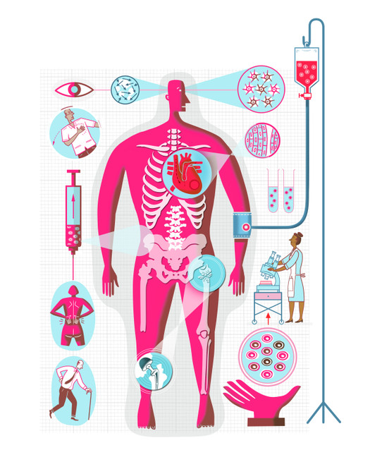 Stem Cell Research / Fit for Life: Series of Health related Feature Illustrations for Saga Publications