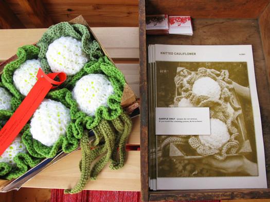 Cauliflower & Knitting Pattern