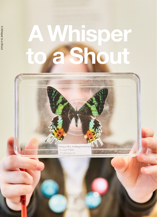 A Whisper to a Shout Book
