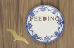 Feeding plate